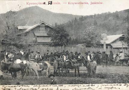 Лист Андрія Франка до Петра Франка